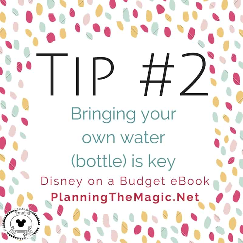 Disney on a Budget eBookPlanningTheMagic.Net