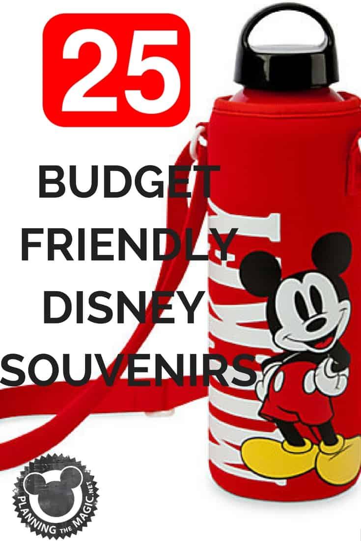 Disney Souvenirs