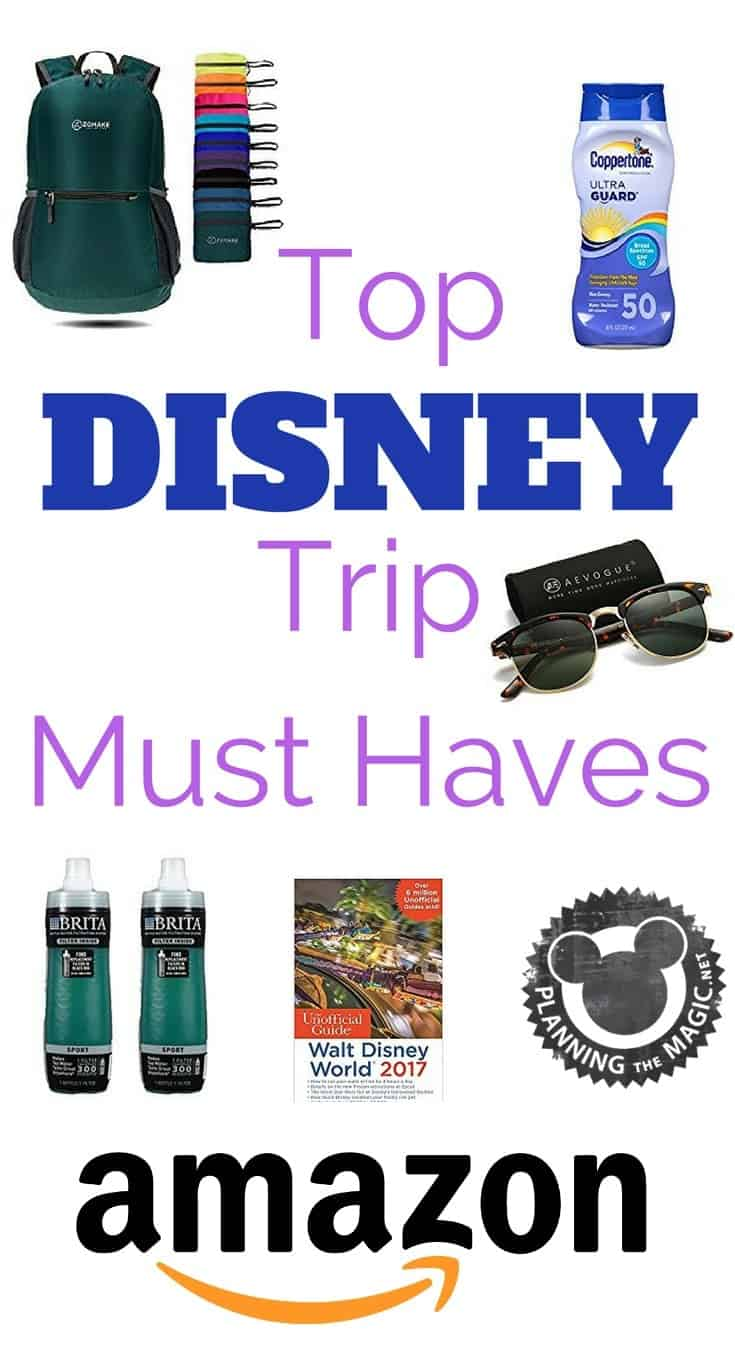 top things for disney trip