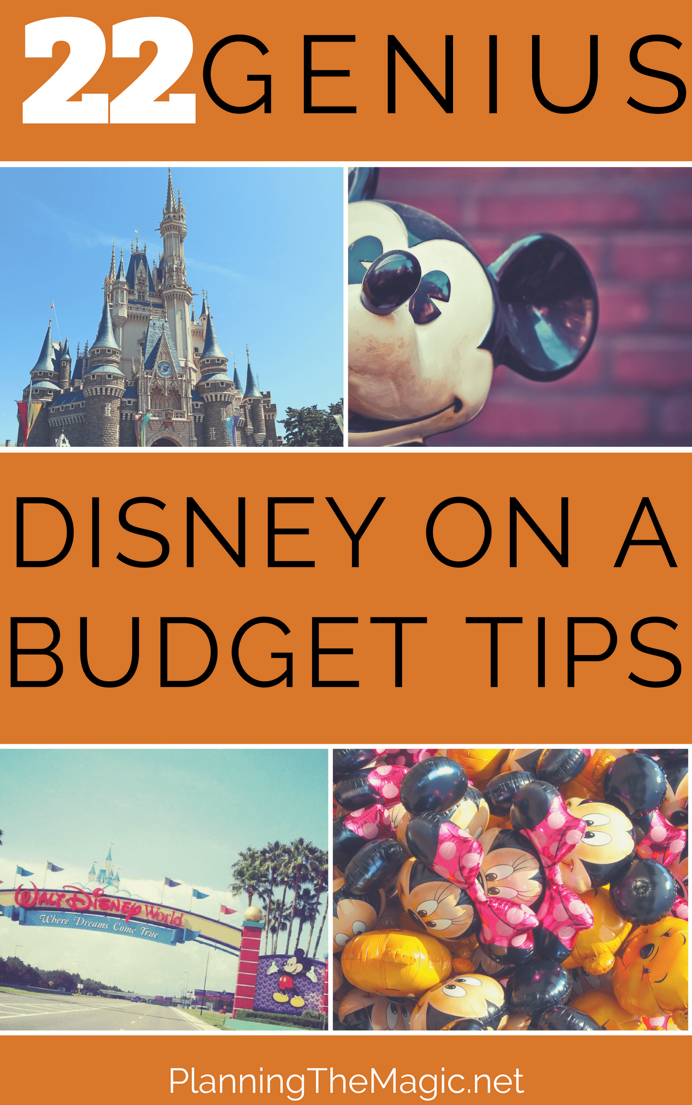 disney on a budget tips