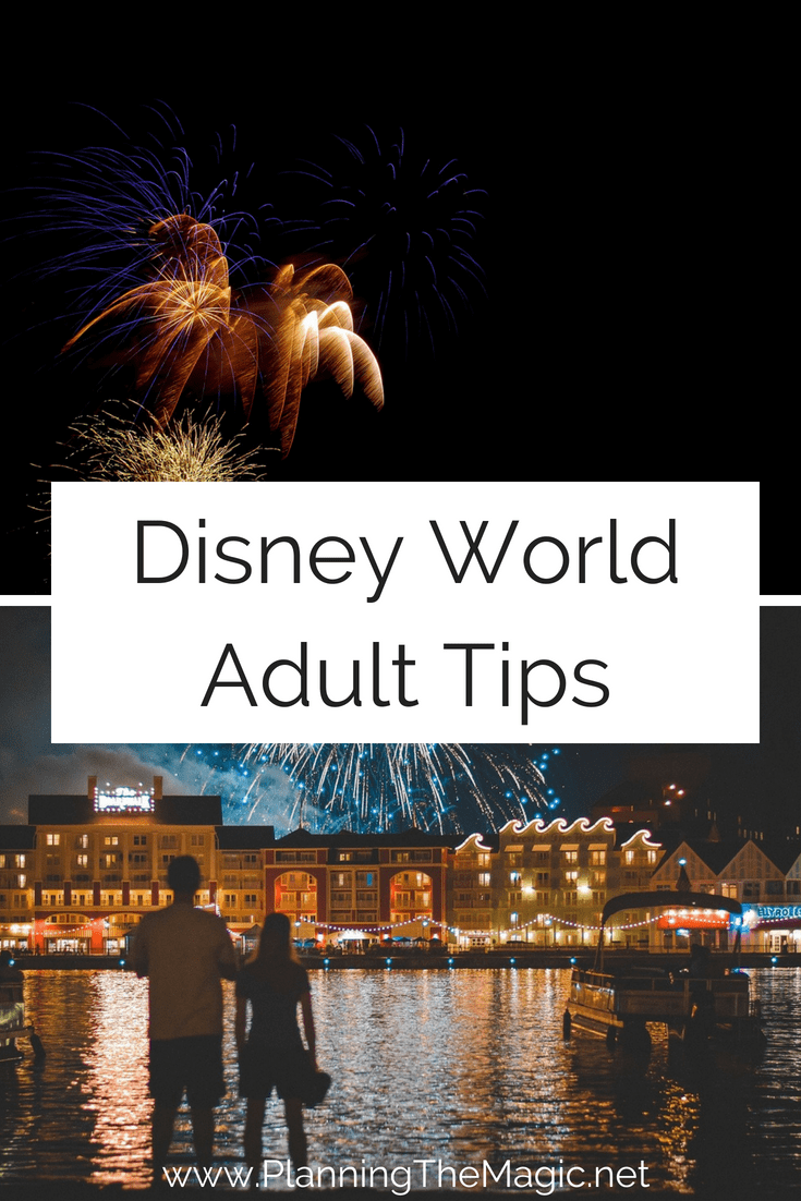 disney world adult tips