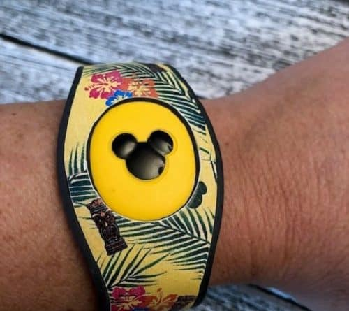 magic band 2 skins