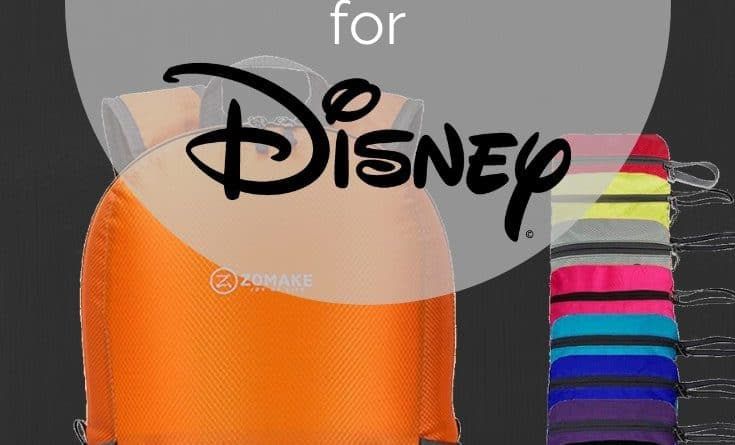 Best Backpack for Disney