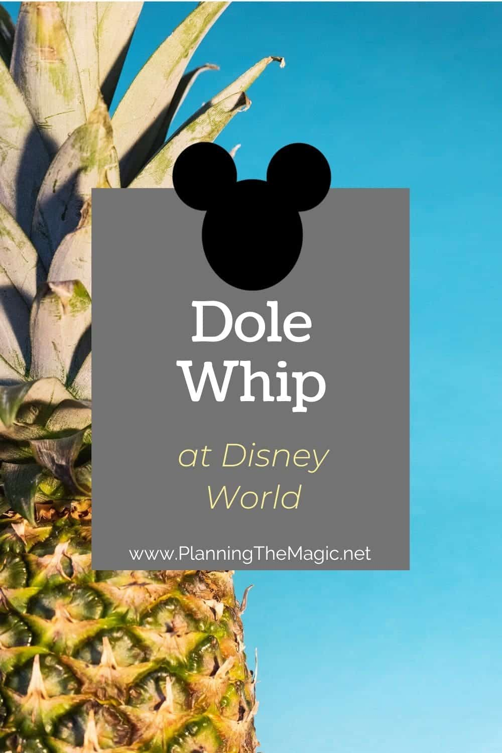 dole whip at disney