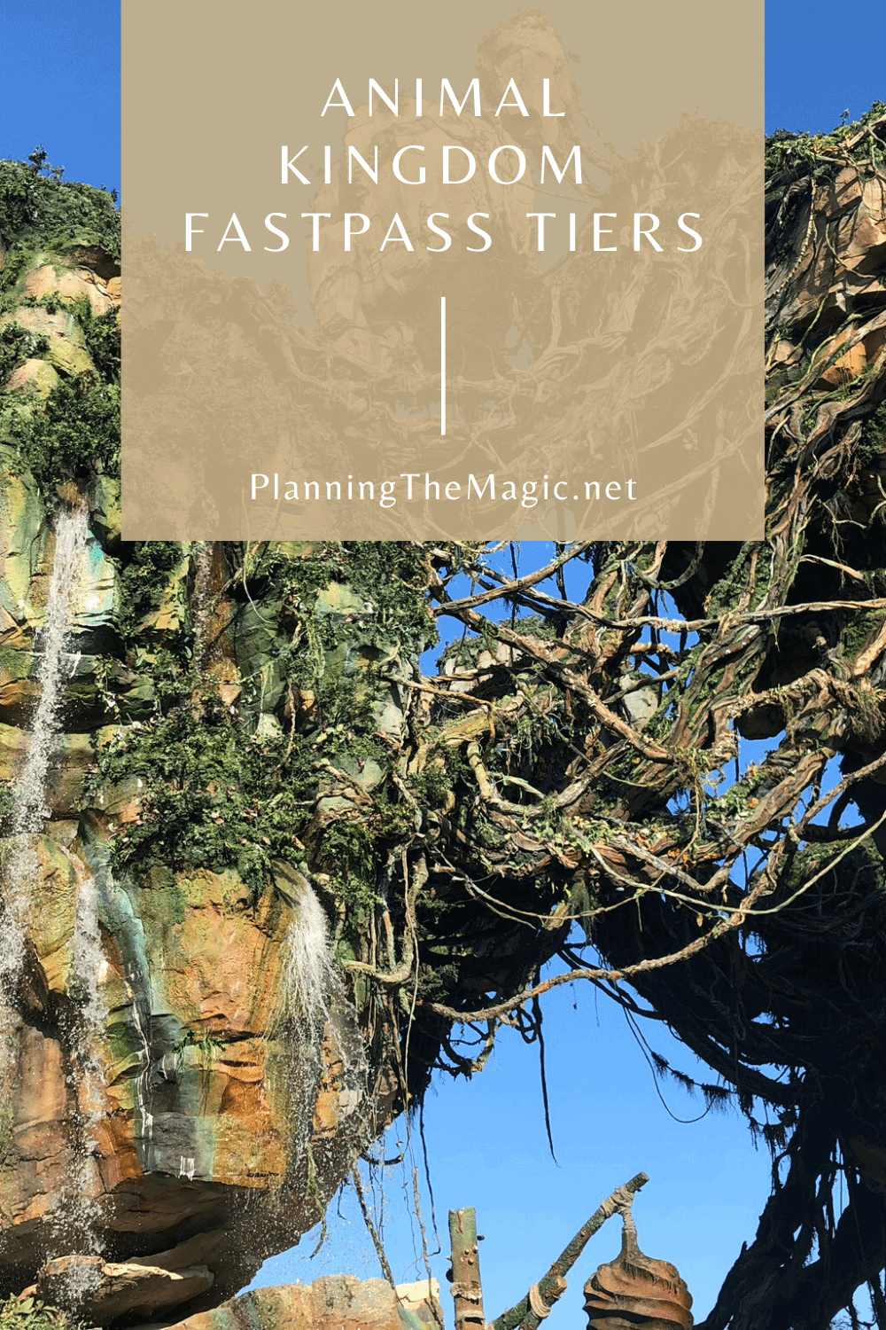 animal kingdom fastpass tiers