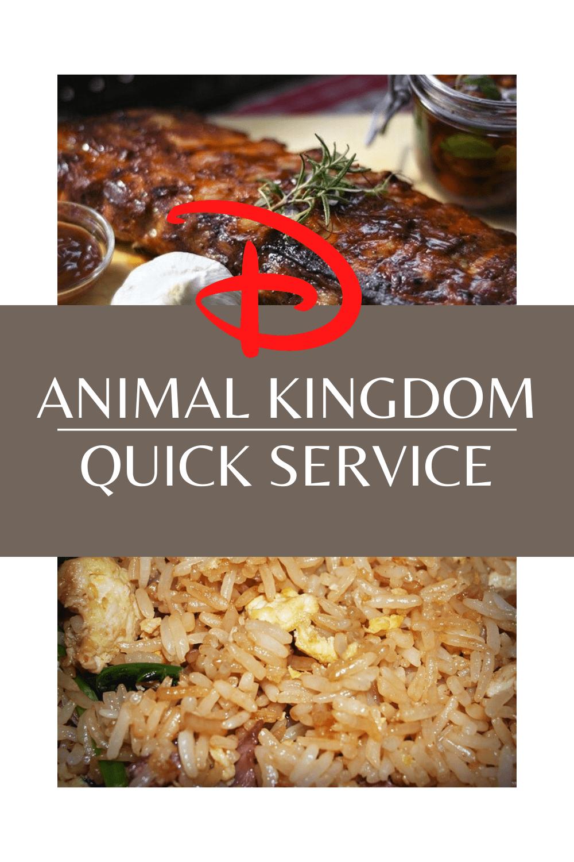 animal kingdom quick service