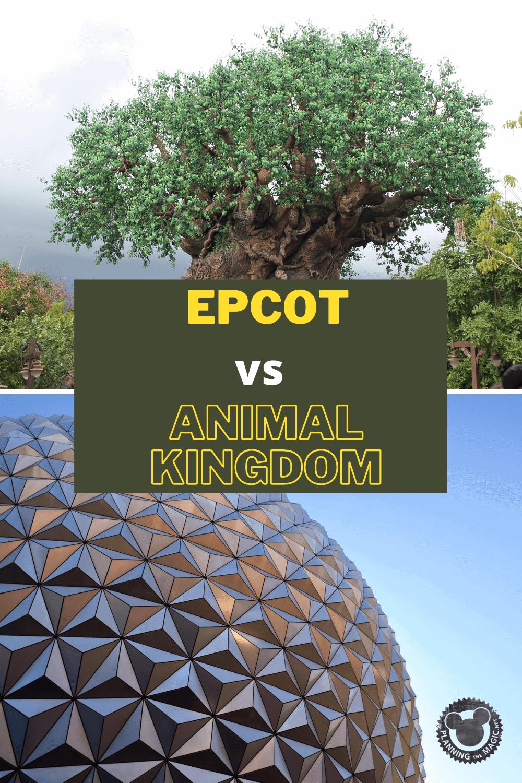 Epcot vs Animal Kingdom